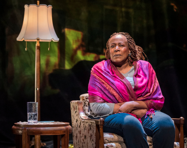 Dael_Orlandersmith_UNTIL_THE_FLOODcCraig_Schwartz